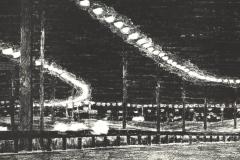 Stentryk-25-40-cm-udfoert-til-ARTE-1981